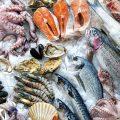 Safcol Fish Market